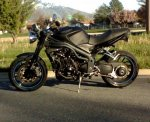 lanes luck's 2008 Triumph Speed Triple